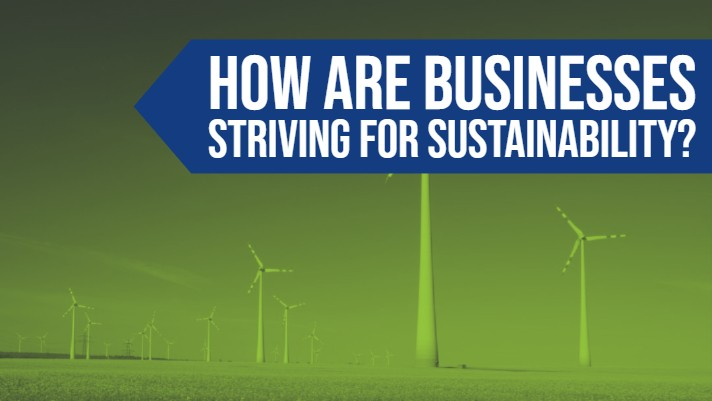 How Are Businesses Striving for Sustainability?